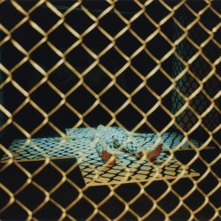 enclosure_4