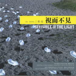 2012-invisibleinthelight