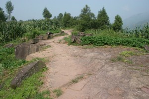qingping village 11