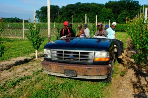 Jamaican-farm-workers-10