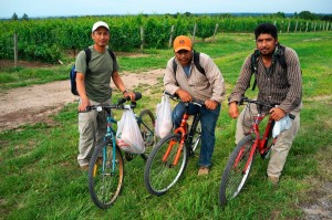 three-mexican-workers