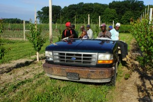Jamaican farm workers 10