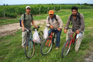 three mexican workers